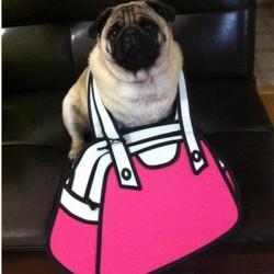 2D Bag Pink Purse